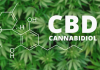 What is CBD and should you use it