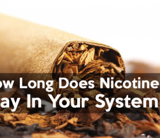 Nicotine Levels in the Bloodstream